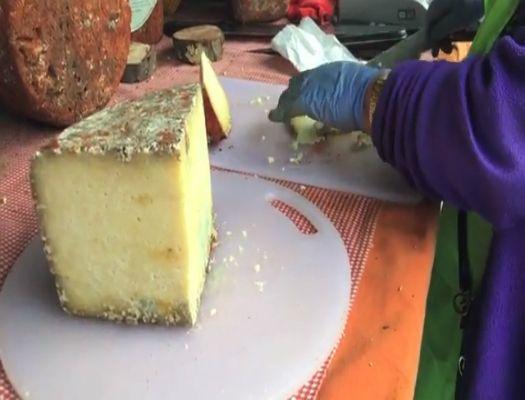 formacion de elaborador de quesos