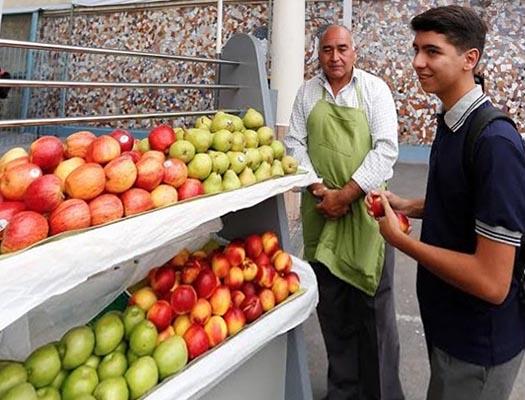 formacion de nutricion y alimentacion saludable